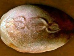 Древний артефакт: Рисунок ДНК на 7000-летнем «Космическом Яйце».