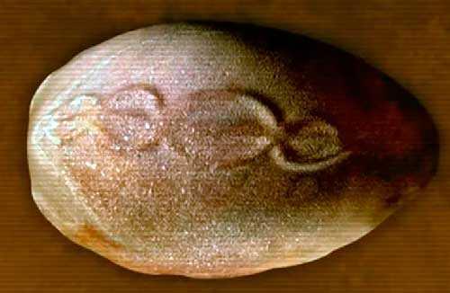 Древний артефакт возрастом 7000 лет с моделью спирали ДНК