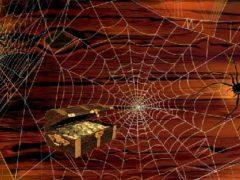 Суеверие: почему нельзя убивать паука, предсказателя будущего.