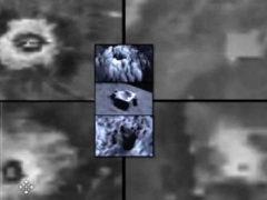 Уфологи обнаружили инопланетную жизнь на Венере.