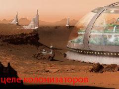 На Марсе будут выращивать картофель.