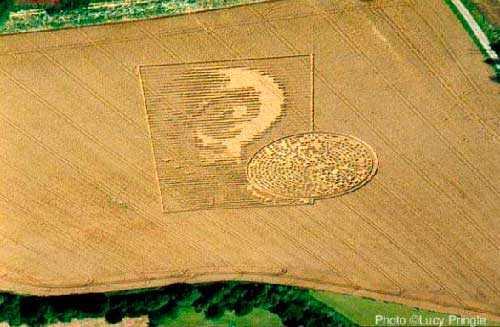 фото круги на полях