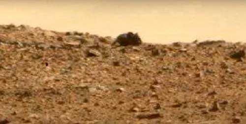 мышь-спокойно гуляющая по Марсу