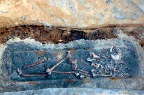 разворошенные кости вампира