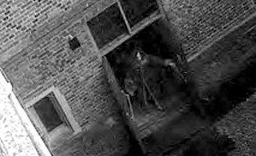 Скелет из Дворца Хэмптон-Корт. Англия, дворец без призрака - халупа