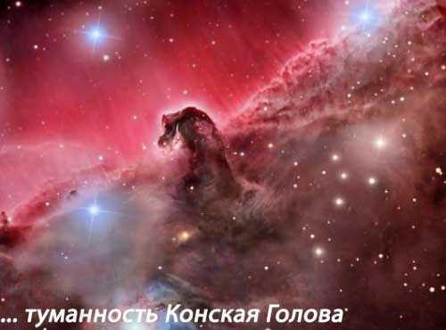 Где-то за туманностью Конская Голова может быть и есть внеземная жизнь