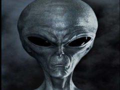 Инопланетяне на Земле, секретный проект СЕРПО: обмен между чужими и людьми.
