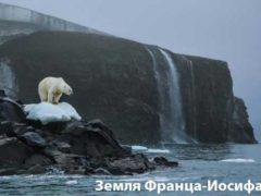 Глобальное потепление – всемирная проблема.