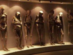 Проклятие древнего Египта и тайны мумификации.