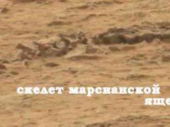 Жизнь на Марсе, история теорий и артефактов.
