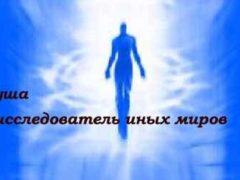 Что душа видит после смерти тела в минуту клинической смерти.