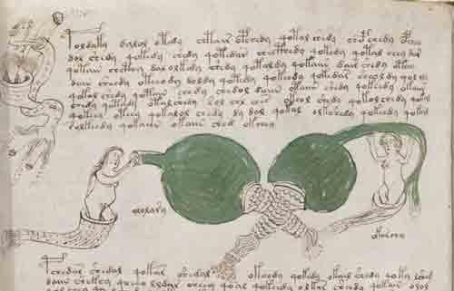 Смог ли искусственный интеллект расшифровать рукопись Войнича