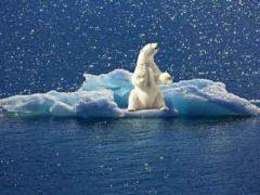 Изменения климата ускоряются: приближаются катастрофические времена для Земли?