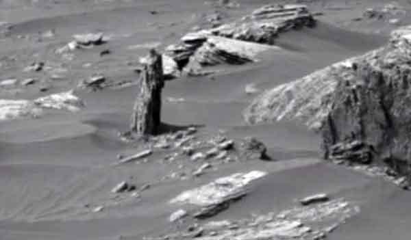 тайны планеты Марс, пенек от дерева