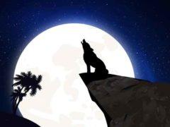 Опасно ли сүперлуние, духовное значение и катастрофы от снежной Луны.