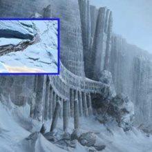 Антарктида, обитатели закрытого континента.