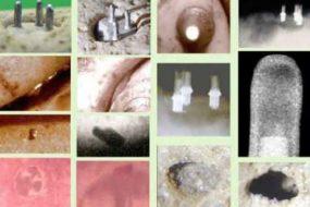 Древние артефакты о проживании на земле прошлых цивилизаций.