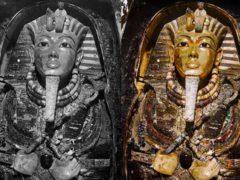 Вскрытие гробницы фараона Тутанхамона и ужасы Египта.