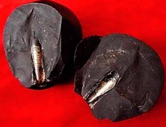 Артефакт древних цивилизаций возрастом 300 миллионов лет пугает историю